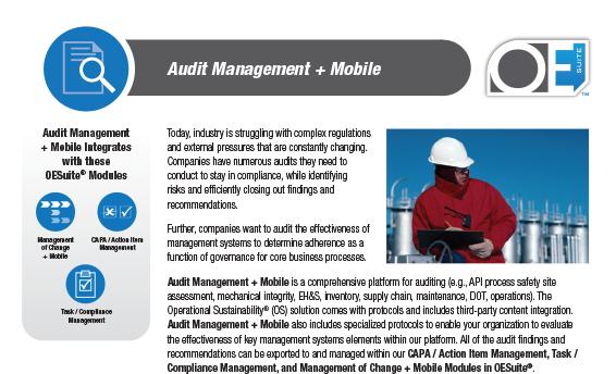 FI-audit-management