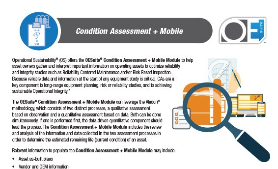FI-condition-assessment