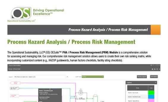 FI-pha-process-risk-mgmt