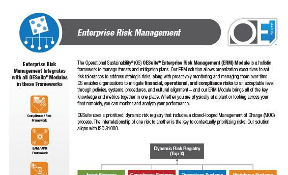 Enterprise Risk Management brochure